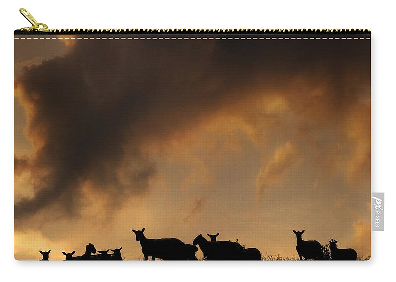 Sheep Carry-all Pouch featuring the photograph Remedy For The Insomnia by Angel Tarantella