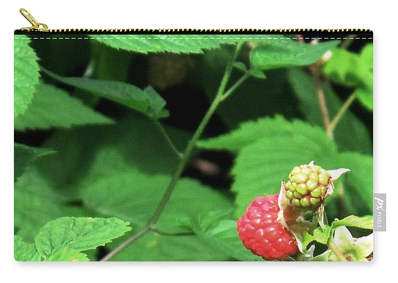 Rasberry Carry-all Pouch featuring the photograph Remembering One Sweet Rasberry by Ian MacDonald