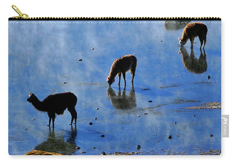 Rendezvous Carry-all Pouch featuring the photograph Rendezvous by Skip Hunt