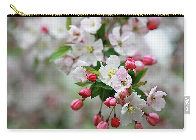 Crab Apple Blossoms Carry-all Pouch featuring the photograph Renewal by Martina Schneeberg-Chrisien