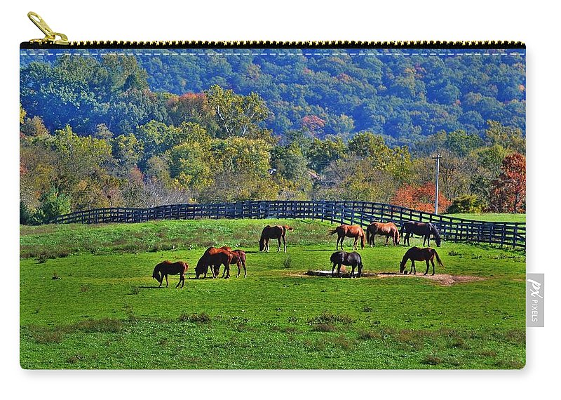 Horses Carry-all Pouch featuring the photograph Rescue Horses by Eileen Brymer