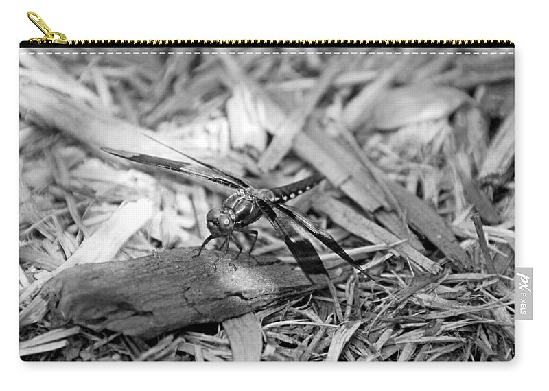 Dragonfly Carry-all Pouch featuring the photograph Resting Dragonfly by Katherine Nutt