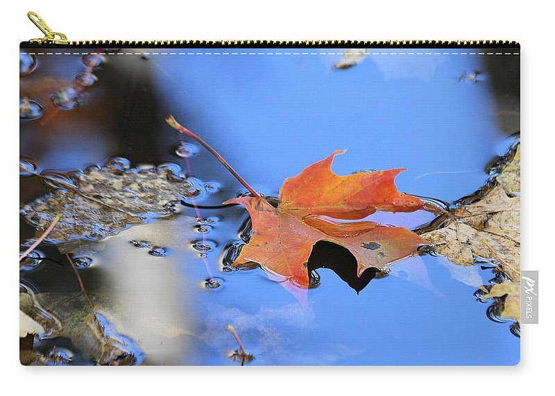 Maple Carry-all Pouch featuring the photograph Resting On Gold And Blue by Doris Potter