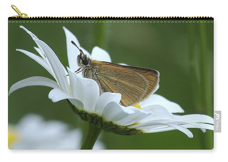 Daisy Carry-all Pouch featuring the photograph Resting Place by Michael Peychich