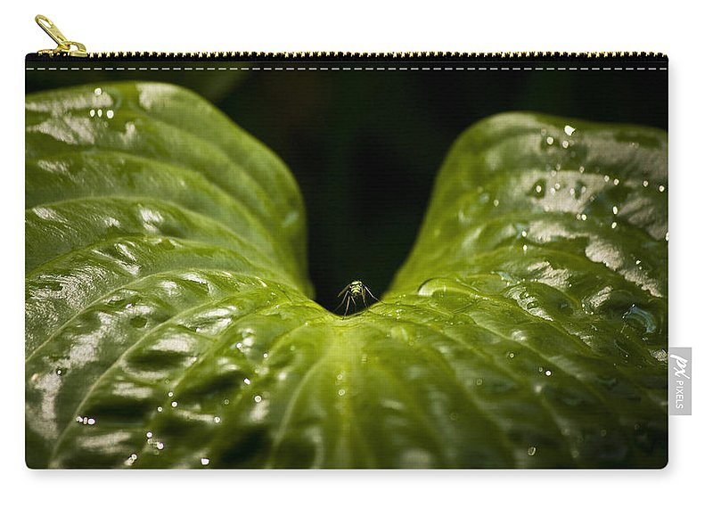Rest Carry-all Pouch featuring the photograph Resting Spot by Teresa Mucha