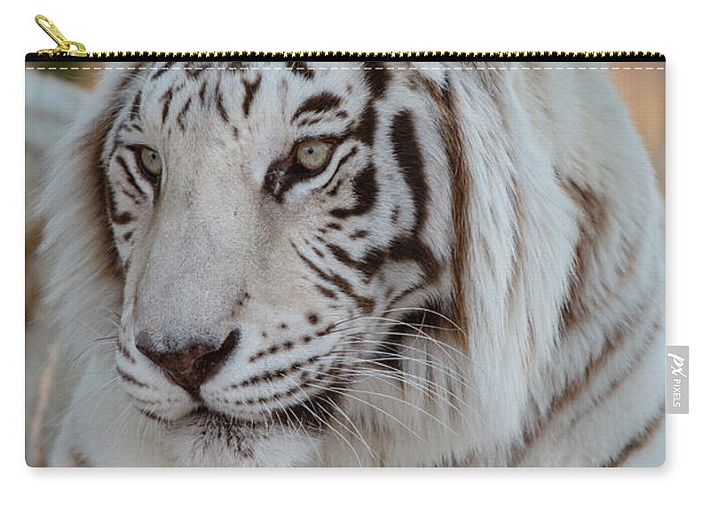 Animal Carry-all Pouch featuring the photograph Resting Tiger by Teresa Wilson