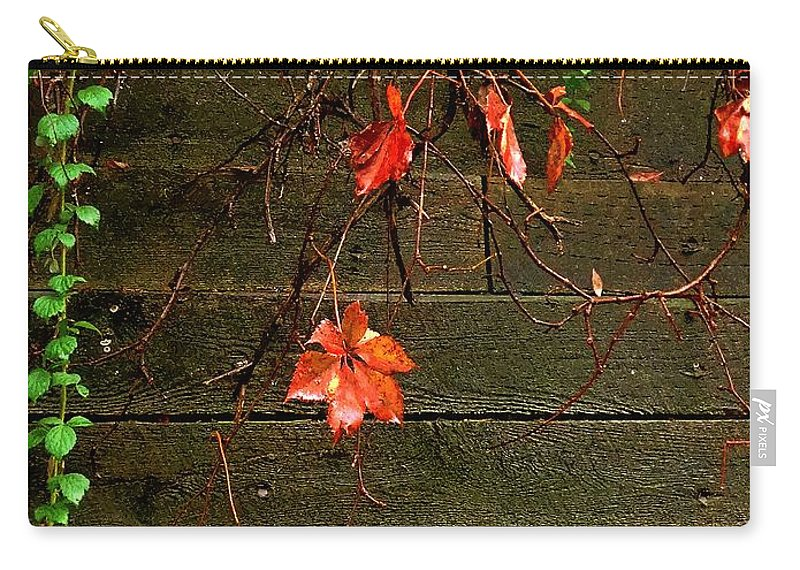 Autumn Carry-all Pouch featuring the painting Retaining Wall In Autumn by RC DeWinter