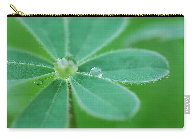 Plant Carry-all Pouch featuring the photograph Retaining Water by Donna Blackhall