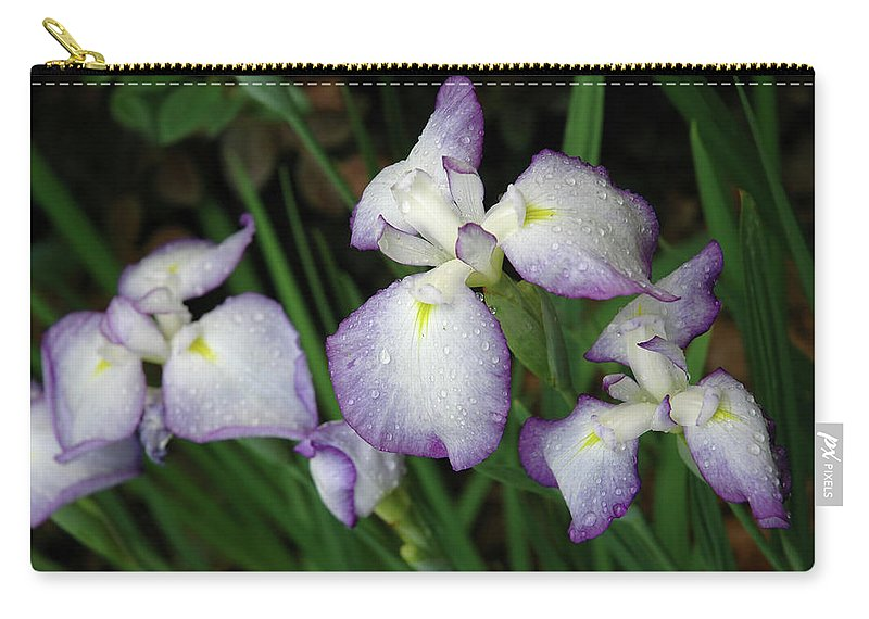 Iris Carry-all Pouch featuring the photograph Rhapsody by Marie Hicks
