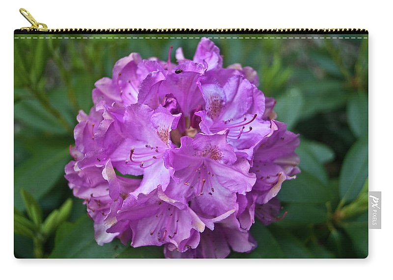 Rhododendron Carry-all Pouch featuring the photograph Rhododendron Elegance by Douglas Barnett