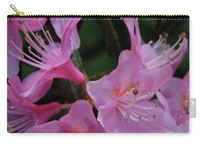 Rhododendron Carry-all Pouch featuring the photograph Rhododendron In The Pink by Laddie Halupa