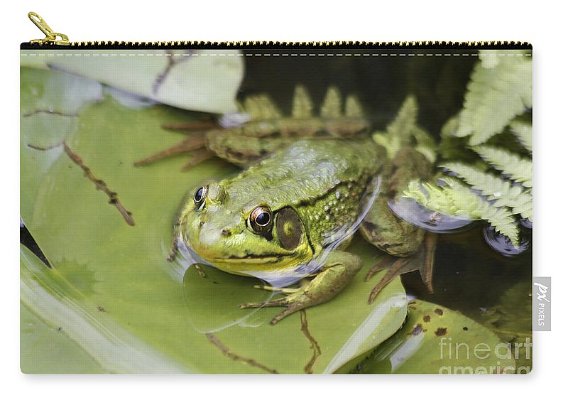 Frog Carry-all Pouch featuring the photograph Ribbet In The Pond by Deborah Benoit