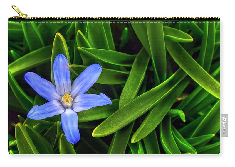 Backyard Carry-all Pouch featuring the photograph Ribbons Of Spring by Evelina Kremsdorf