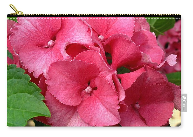 Pink Carry-all Pouch featuring the photograph Rich Pink by Ian MacDonald