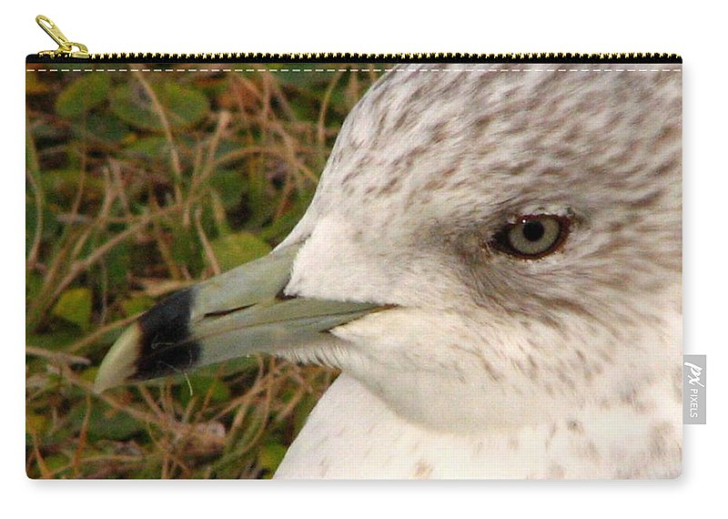 Gull Carry-all Pouch featuring the photograph Ring Billed Gull Profile by J M Farris Photography