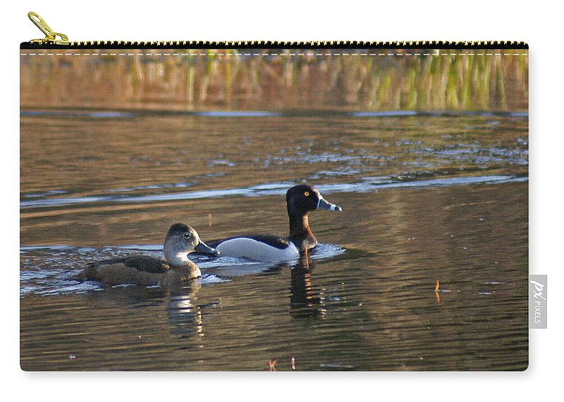 Duck Carry-all Pouch featuring the photograph Ring Necked Duck by Heather Coen