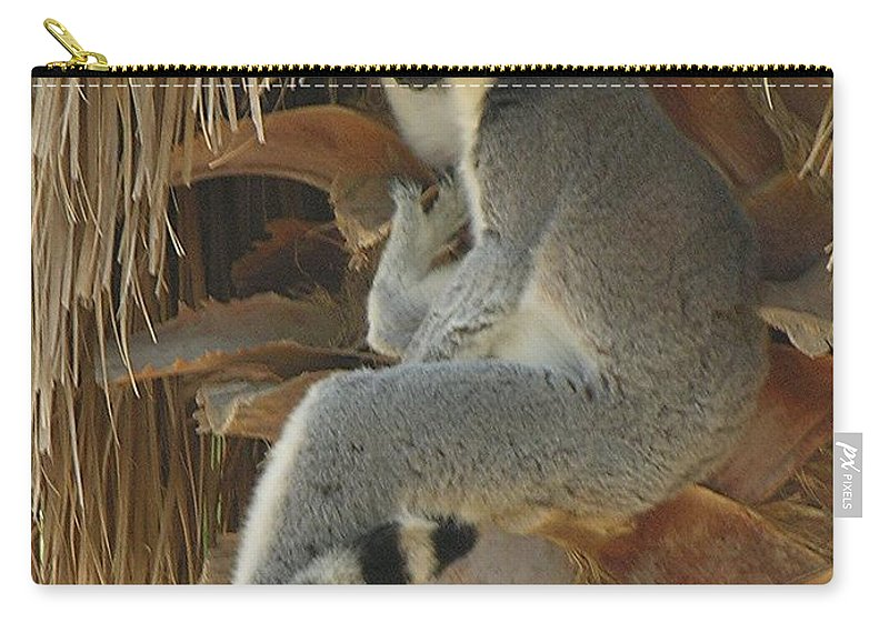 Ringtail Carry-all Pouch featuring the photograph Ring Tail by Diane Greco-Lesser