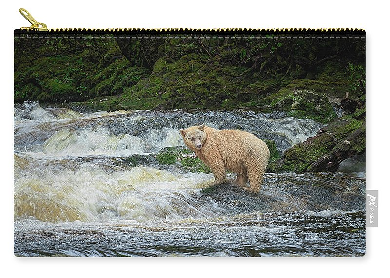 Bear Carry-all Pouch featuring the photograph Ringer Unsigned by Steven Clevidence