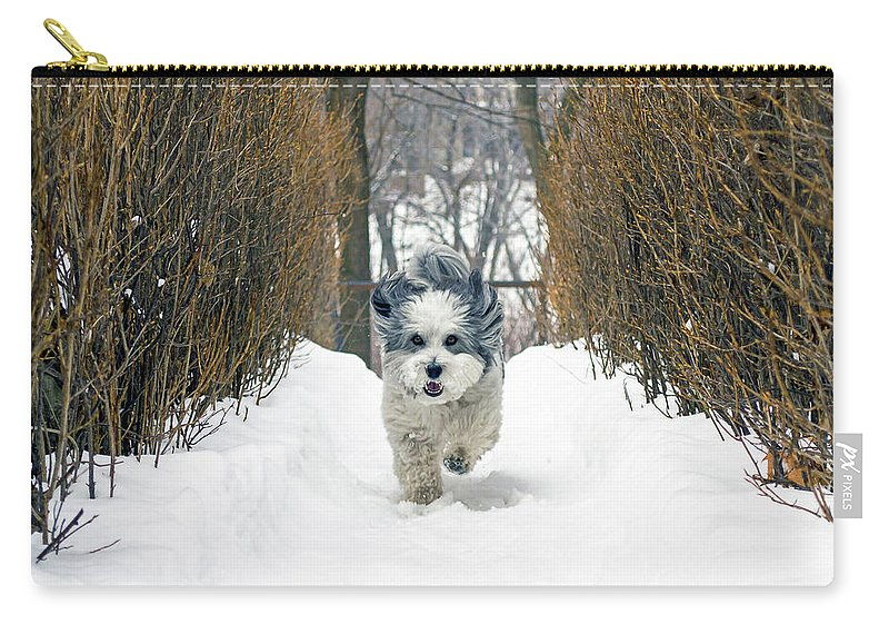 Winter Carry-all Pouch featuring the photograph Ripley's Run by Keith Armstrong