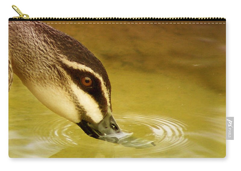 Animals Carry-all Pouch featuring the photograph Ripples by Holly Kempe