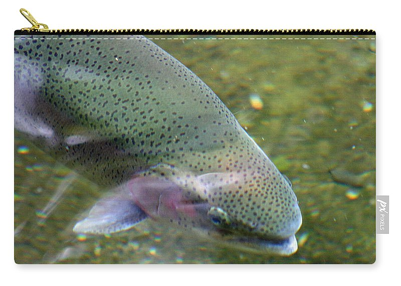 Rainbow Carry-all Pouch featuring the photograph Rising by Ben Zell