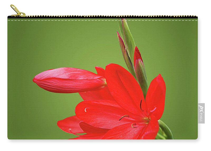 Red Lily Carry-all Pouch featuring the photograph Ritzy Red by Gill Billington