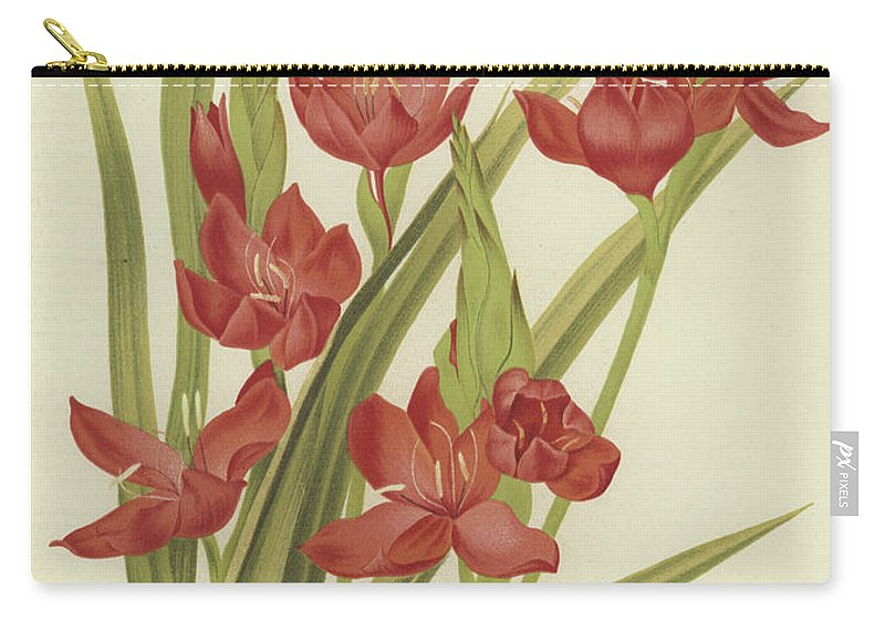 River Lily Carry-all Pouch featuring the painting River Lily Or Crimson Flag by English School