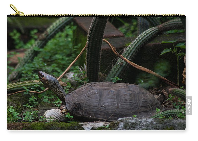 River Turtle Carry-all Pouch featuring the photograph River Turtle 1 by Totto Ponce
