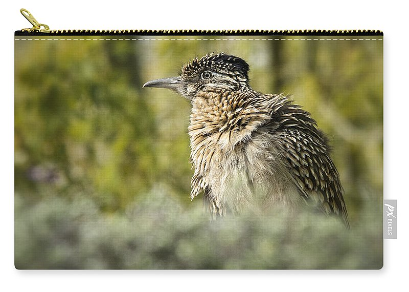 Greater Roadrunner Carry-all Pouch featuring the photograph Roadrunner On Guard by Saija Lehtonen