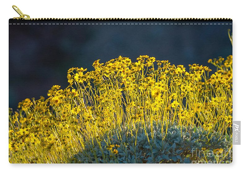 Yellows Carry-all Pouch featuring the photograph Roadside Flowers by Stephen Whalen