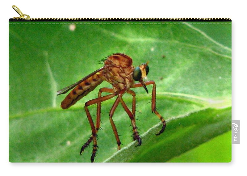 Robber Fly Carry-all Pouch featuring the photograph Robber Fly by J M Farris Photography