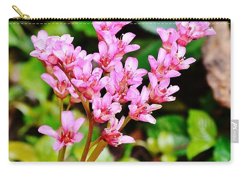 Flower Carry-all Pouch featuring the photograph Rock Splitter 20 by Kim Bemis