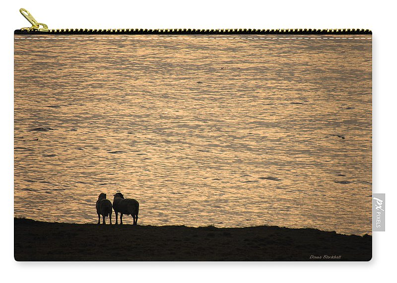 Sheep Carry-all Pouch featuring the photograph Romancing The Sheep by Donna Blackhall