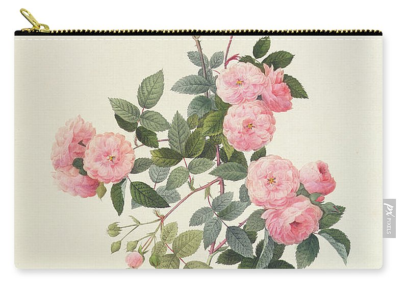 Rosa Carry-all Pouch featuring the drawing Rosa Multiflora Carnea by Pierre Joseph Redoute