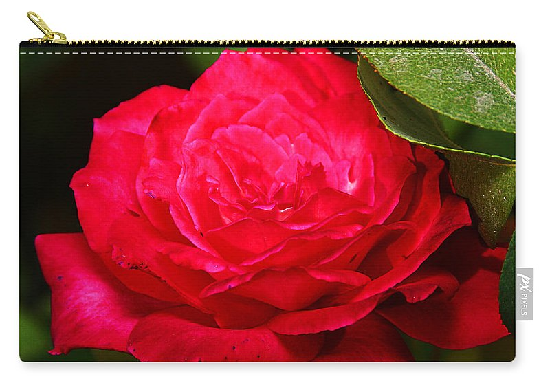 Flower Carry-all Pouch featuring the photograph Rose by Anthony Jones