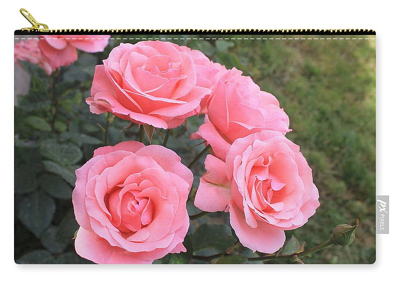 Flower Carry-all Pouch featuring the photograph Rose by Armen Kirakosyan