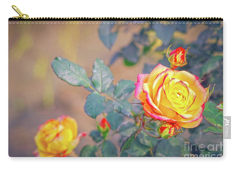 Flower Carry-all Pouch featuring the photograph Rose At Sunset by Neha Gupta