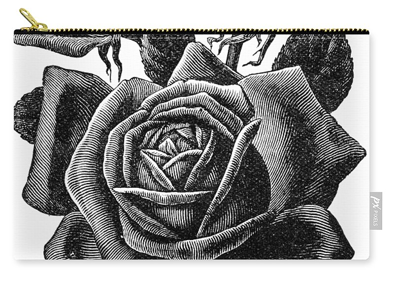 Vintage Rose Carry-all Pouch featuring the digital art Rose Black by ReInVintaged
