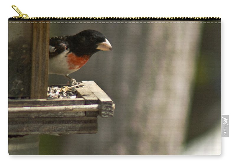 Rose Carry-all Pouch featuring the photograph Rose Breasted Grosbeak Feeding by Douglas Barnett