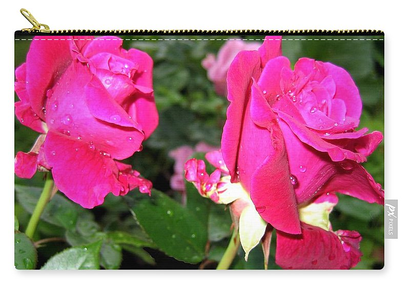 Roses Carry-all Pouch featuring the photograph Rose Duo by Will Borden