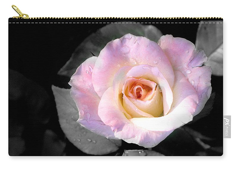 Princess Diana Rose Carry-all Pouch featuring the photograph Rose Emergance by Steve Karol