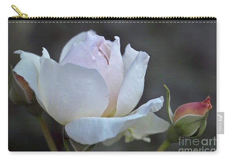 Rose Carry-all Pouch featuring the photograph Rose Flower Series 14 by Heiko Koehrer-Wagner