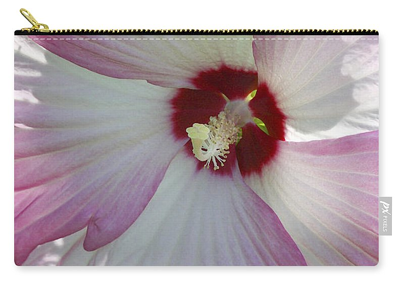 Flower Carry-all Pouch featuring the photograph Rose Of Sharon by Deborah Benoit