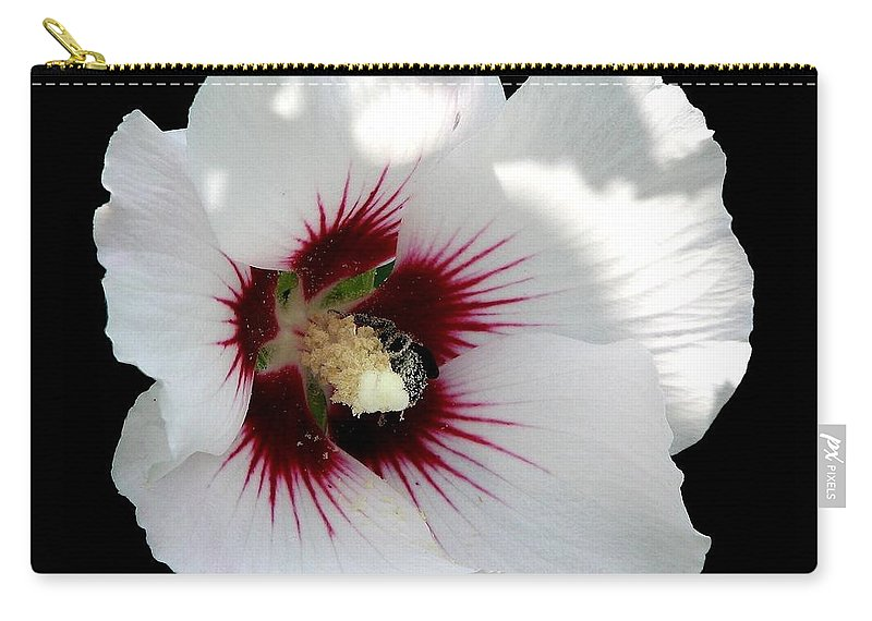 Rose Of Sharon Carry-all Pouch featuring the photograph Rose Of Sharon Flower And Bumble Bee by Rose Santuci-Sofranko