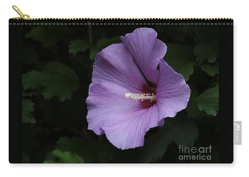 Flower Carry-all Pouch featuring the photograph Rose Of Sharon - Hibiscus Syriacus by Ann Horn