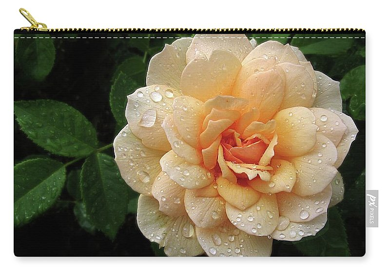 Flower Carry-all Pouch featuring the photograph Rose Rain by Jessica Jenney