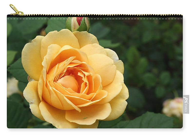 Carry-all Pouch featuring the photograph Rose by Teresa Doran