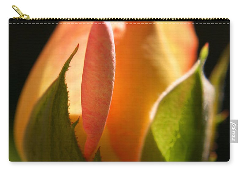 Rosebud Carry-all Pouch featuring the photograph Rosebud by Ralph A Ledergerber-Photography