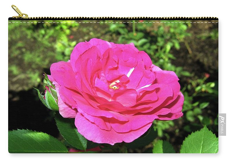 Rose Carry-all Pouch featuring the photograph Roses 10 by Will Borden