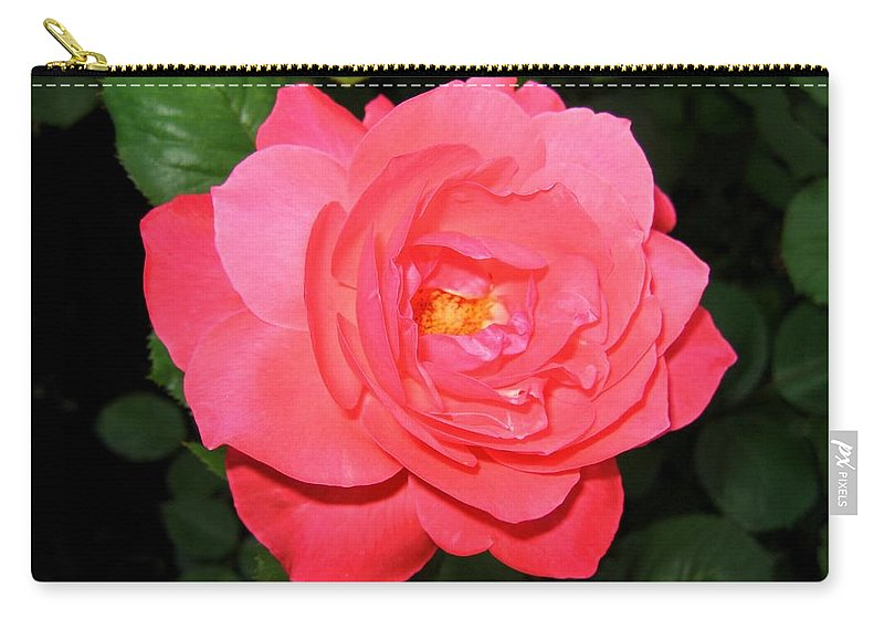 Rose Carry-all Pouch featuring the photograph Roses 12 by Will Borden